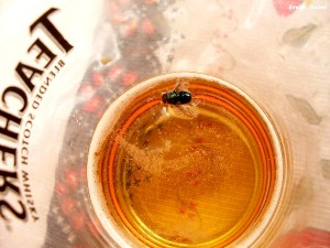Afogado em cerveja